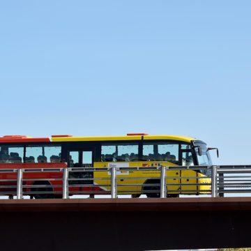 La nueva red de buses TIB inicia el servicio con nuevas conexiones, más frecuencias e Inca como punto de enlace más importante