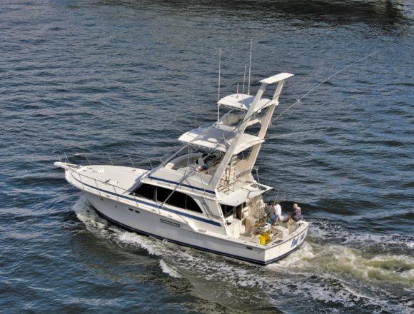 La CEACNA prepara una batería de alegaciones al Proyecto de Real Decreto de pesca marítima de recreo